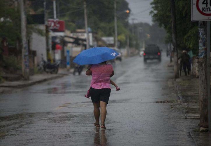 'Earl' provocó intensas lluvias en Veracruz. (EFE)