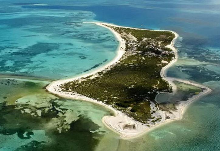 La Universidad Autónoma de Yucatán (Uady), en coordinación con la Comisión Nacional de Áreas Naturales Protegidas (Conanp) trabajan en el Parque Nacional Arrecife Alacranes. (SIPSE)