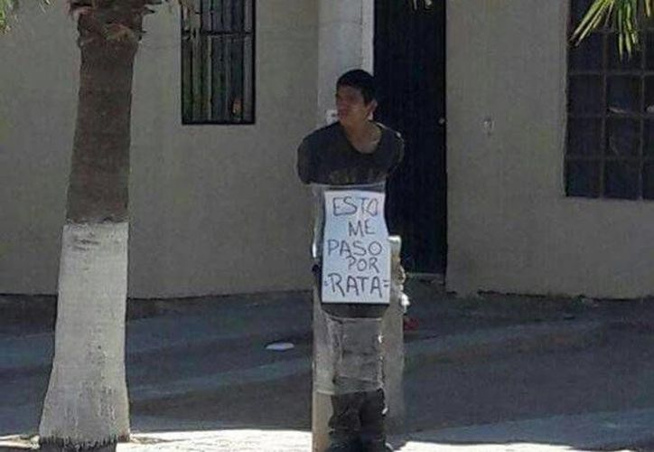 El presunto delincuente pasó horas amarrado bajo el inclemente sol de Hermosillo, Sonora. (excelsior.com)