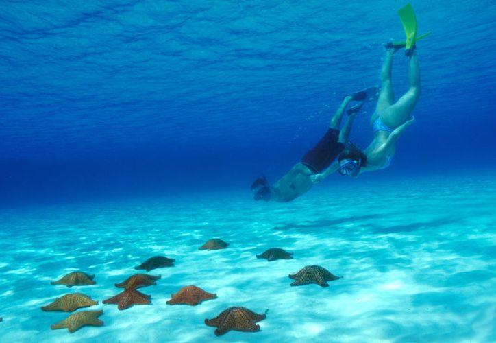 Cozumel es un lugar ideal para pasar este 14 de febrero debido a los arrecifes con los que cuenta. (Foto: Sectur)