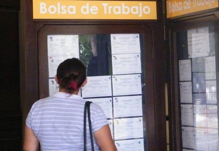 Una mujer busca empleo en un anuncio de bolsa de trabajo. Este trimestre disminuyó la tasa de desocupación en el país. (Archivo/SIPSE)