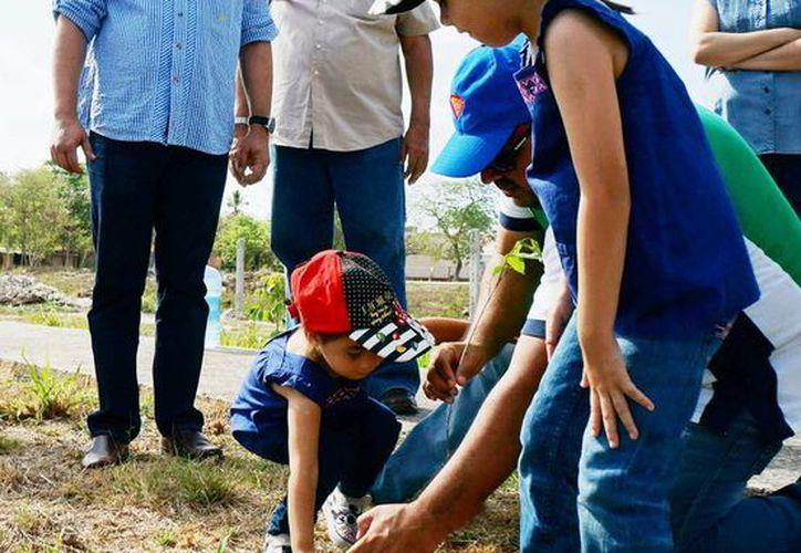 Decenas de familias y funcionarios del IMSS se dieron cita para plantar nuevos árboles. (Milenio Novedades)