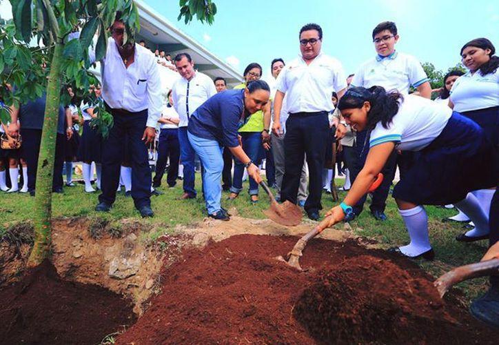 Serán 100 árboles nativos los que se plantarán en este centro educativo. (Foto: Redacción)