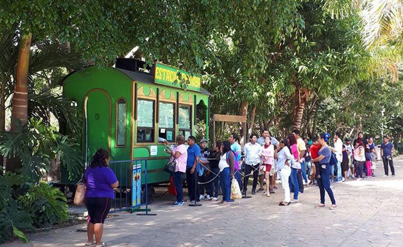 El zoológico Animaya estará cerrado. (Foto: redes sociales)