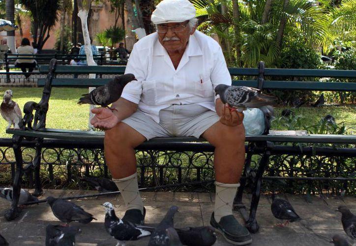 Para este viernes y el sábado se pronostican lluvias de fuertes a muy fuertes en Yucatán. (SIPSE)