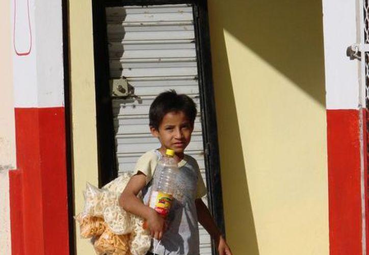 """El número de niños """"venteritos"""" ha ido en aumento en la cabecera municipal de Felipe Carrillo Puerto. (Manuel Salazar/SIPSE)"""