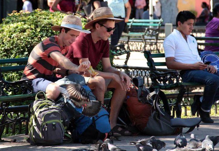 El sector empresarial señala que la seguridad en Yucatán propicia la afluencia de turistas. Imagen de contexto de una pareja de extranjeros sentados en una banca de la Plaza grande de Mérida.(Milenio Novedades)