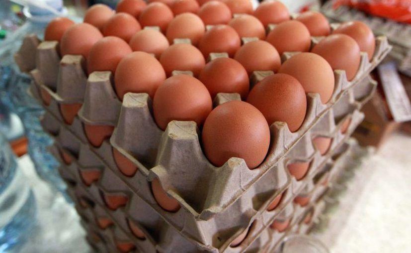 El precio del huevo se mantiene a la expectativa, debido al brote de gripe aviar en Guanajuato. (Agencias)