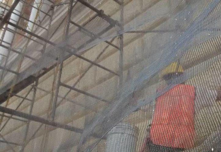 En Yucatán, 9 de cada 10 despidos son injustificados, asegura la Procuraduría de la Defensa del Trabajo. En la foto, un trabajador de la construcción, imagen utilizada sólo con fines ilustrativos. (SIPSE.com)