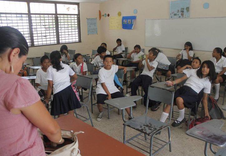 Mencionan que son pocos los maestros que terminal programa escolar. (Jesús Tijerina/SIPSE)