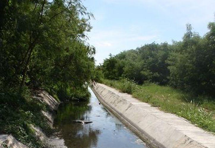 La Comisión de Medio Ambiente municipal advirtió días atrás que descargas residuales estarían contaminando manto freático. (Enrique Mena/SIPSE)