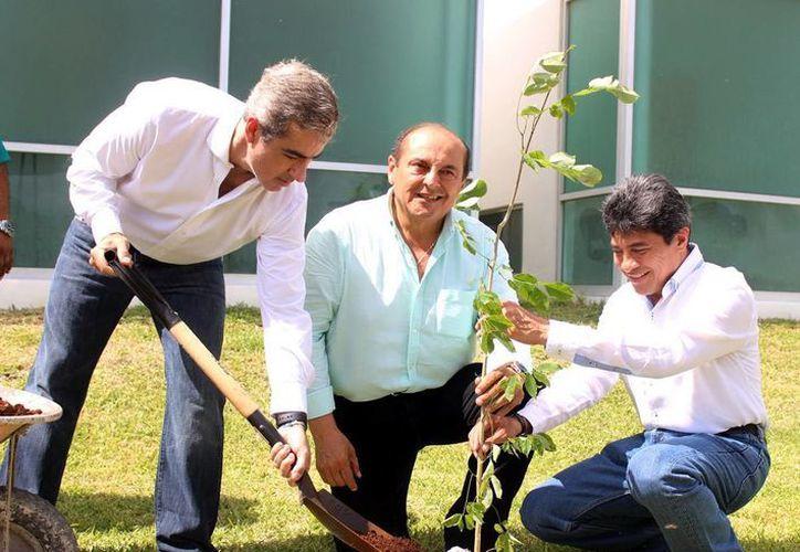 José Lafontaine Hamui, Jorge Carlos Berlín Montero y Ariel Aldecua durante la siembra de un árbol en la Fiscalía General del Estado. (Milenio Novedades)