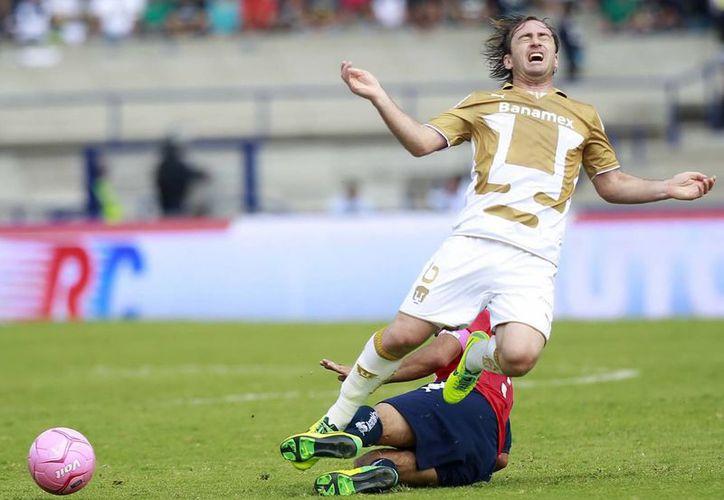 Pumas de la UNAM no ha dado una en todo el Apertura 2013. (Archivo Notimex)