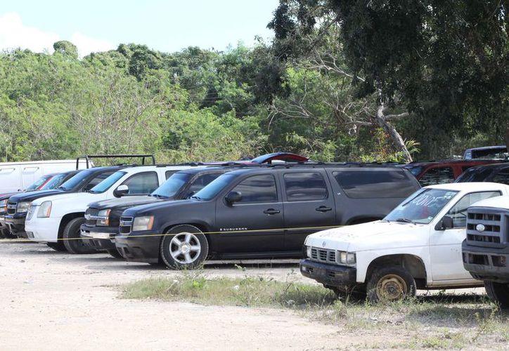Pondrán en subasta más de 420 vehículos diferentes. (Joel Zamora/SIPSE)
