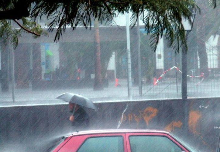 Se esperan tormentas en Tabasco, Chiapas, Puebla, Veracruz, Oaxaca, Guerrero, Hidalgo, Campeche, Yucatán y Quintana Roo. (Debate)