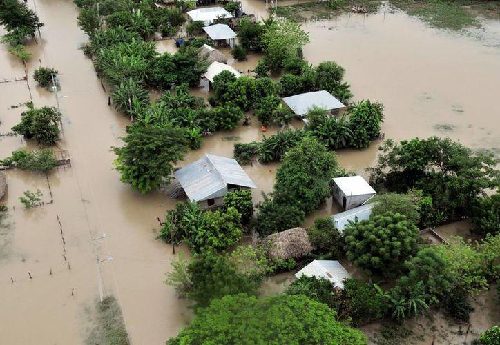 En San Luis Potosí el municipio más afectado es San Vicente Tancuayalab. (Notimex)