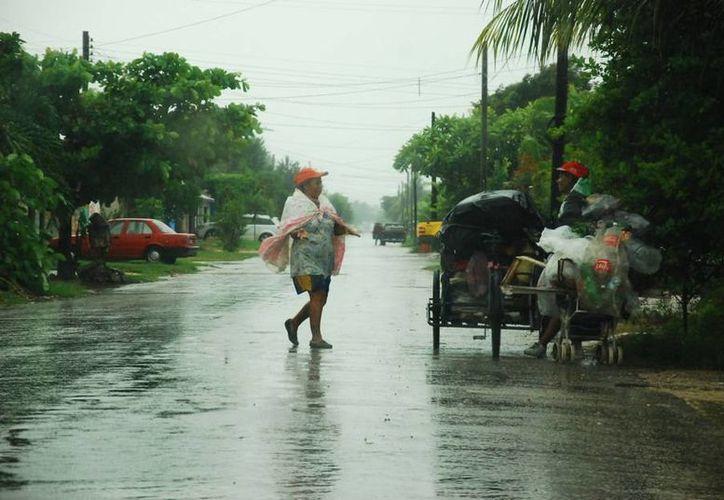 Este año sentiremos los efectos del fenómeno en los meses de julio a agosto. (Claudia Martín/SIPSE)