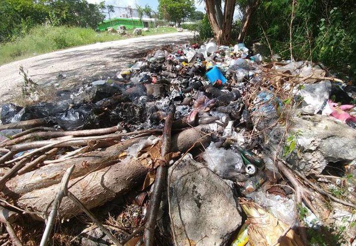 De acuerdo a la Seduma en Mérida hay unos 500 basureros clandestinos, pues hay gente que no cuenta con los correctos servicios de recolección de desechos. (José Acosta/SIPSE)