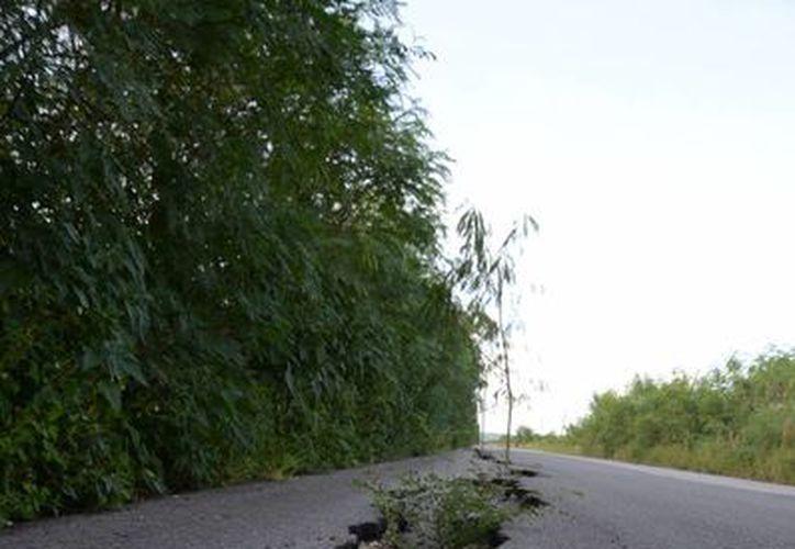 La vía es de suma importancia para los productores de la región y población en general. (Juan Rodríguez/SIPSE)