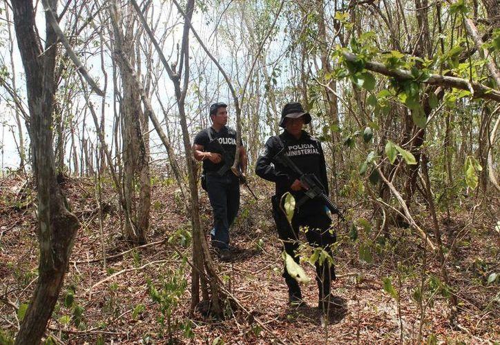 Policías federales y estatales recorrieron montes del oriente de Yucatán en busca de los asaltantes del autobús que cubría la ruta Cancún-Mérida. (SIPSE)