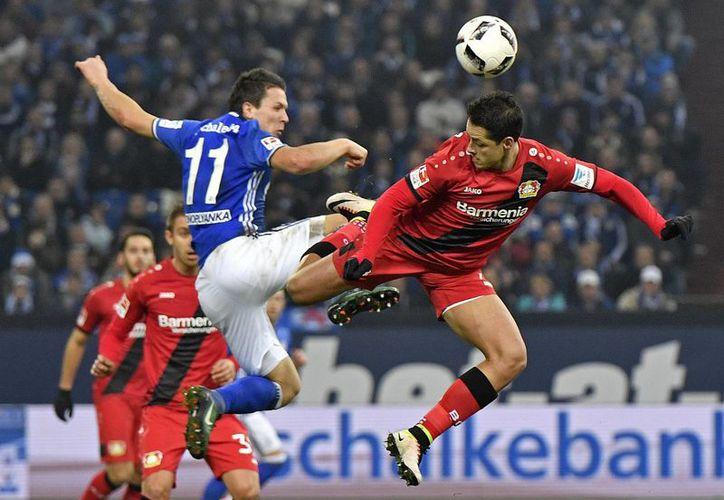 Javier Hernández alargó su sequía goleadora en el triunfo del Bayer Leverkusen 1-0 sobre el Schalke 04.(Martin Meissner/AP)