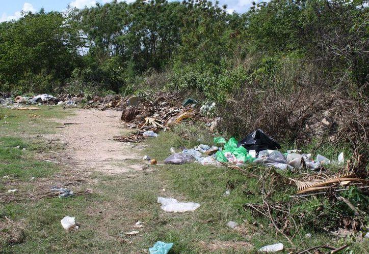 Refuerzan las medidas para combatir el dengue e invitan a las familias a mantener sus patios limpios. (Harold Alcocer/SIPSE)