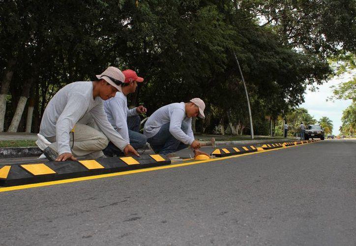 La inversión global de la ciclovías fue de 230 millones de pesos. (Foto: Redacción)