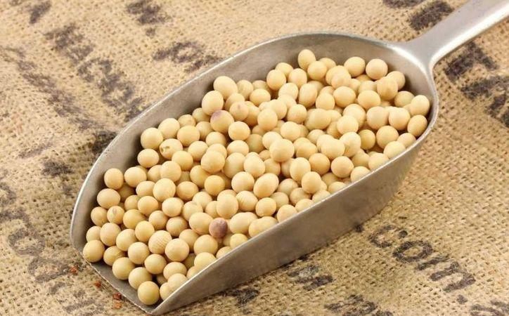El consumo de la soya en exceso también puede empeorar el padecimiento de gota.  (Foto: Contexto/Internet)