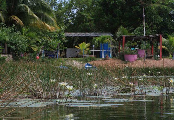 Los individuos establecidos de manera irregular en los alrededores contaminan con sus desperdicios el lugar. (Ángel Castilla/SIPSE)