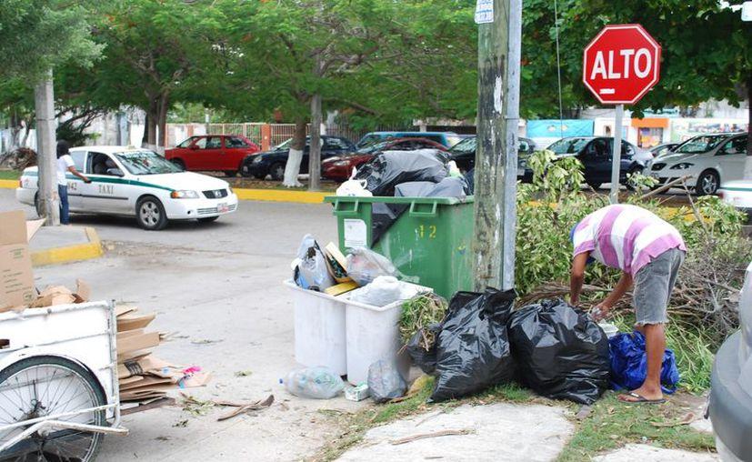 Recomiendan separar los desechos orgánicos e inorgánicos para que la recolección sea fácil. (Tomás Álvarez/SIPSE)