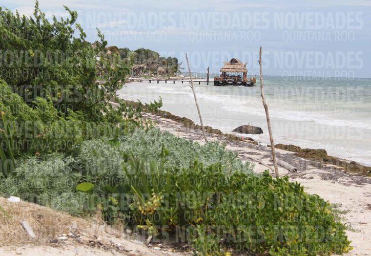 El predio de 16 hectáreas se ubica en la zona de Mahahual. (Joel Zamora/SIPSE)