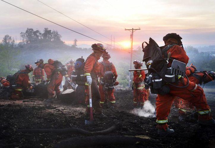 Las causas del incendio, que inició el viernes, aún se desconocen. (EFE)