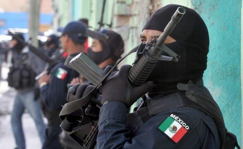 En los últimos cinco meses las autoridades han abatido a  269 presuntos criminales en Tamaulipas. (Agencias)