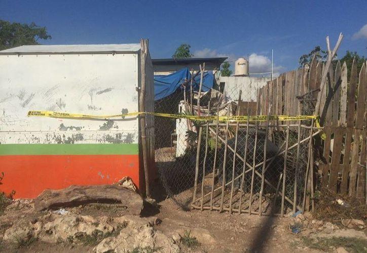 Las personas fueron ejecutadas en su domicilio, ubicado en la colonia irregular, Cuna Maya. (Redacción/SIPSE)