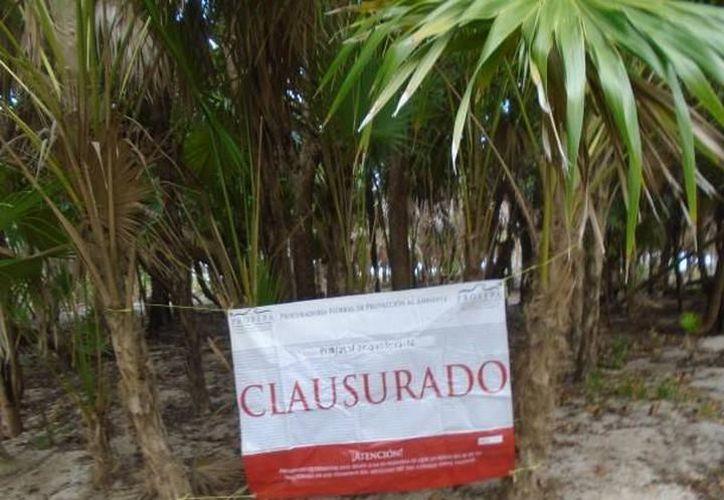 Tres desarrollos turísticos han violado los sellos de clausura en Tulum. (Foto: Contexto/Internet)