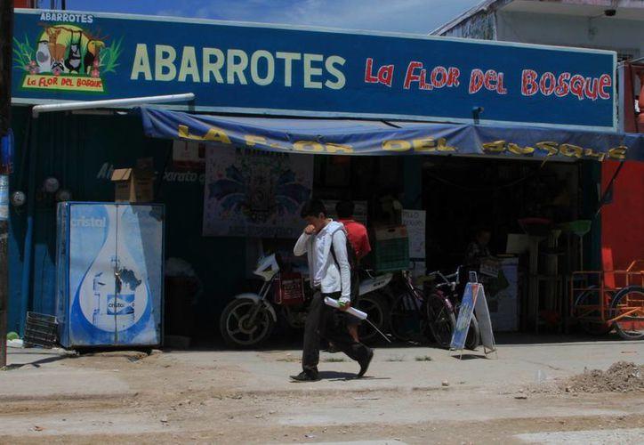 Agregó que el costo de afiliación a la cámara va desde los 600 hasta los dos mil pesos, de acuerdo al número de empleados que tiene cada comercio. (Ángel Castilla/SIPSE)