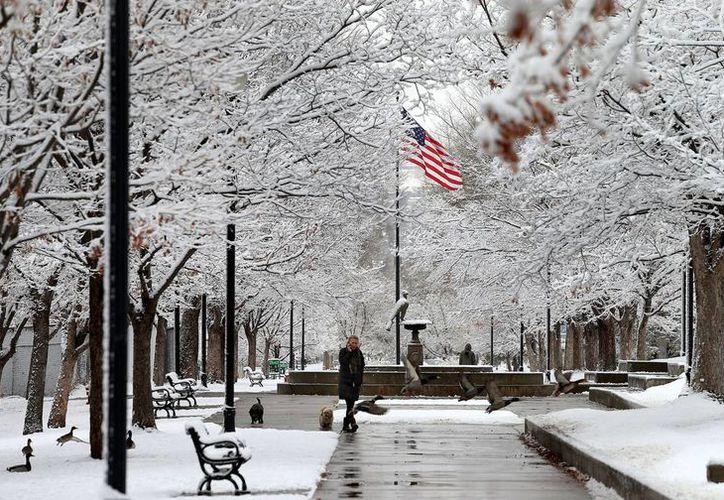 Una persona pasea a su perro por el Liberty Park en Salt Lake City, Utah. (Agencias)