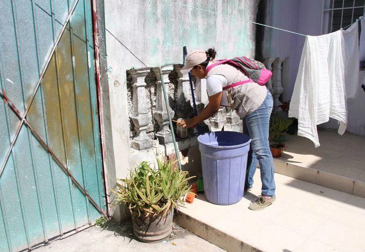 Las labores de nebulización continúan en las regiones. (Tomás Álvarez/SIPSE)