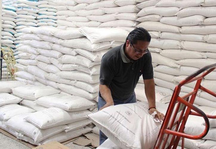 La temporada de vara dulce favorece a muchos productores, sobre todo, de otros estados como Chiapas. (Carlos Castillo/SIPSE)