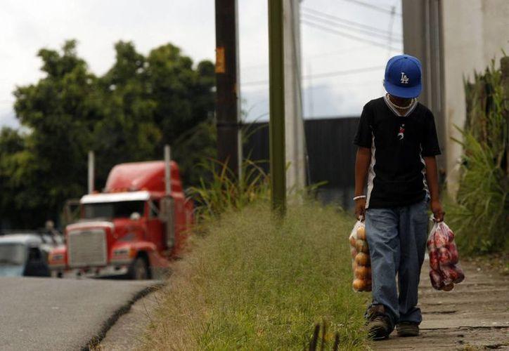 """La Organización Internacional del Trabajo (OIT) establece que las """"peores formas de trabajo infantil"""" son todas las formas de esclavitud o las prácticas análogas a la esclavitud. (EFE/Archivo)"""