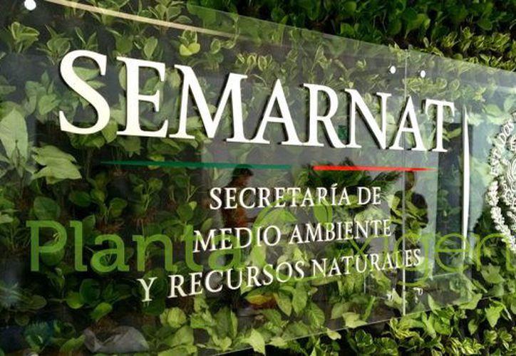 Semarnat rechazó la propuesta de trasladar la dependencia a Mérida. (Agencias)