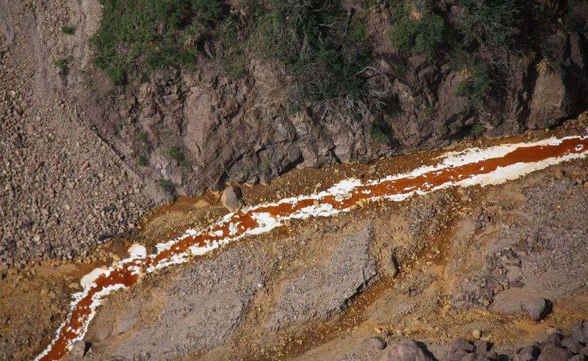 Las autoridades llamaron a la población de la zona de los ríos Bacanuchi y Sonora a no consumir el agua de los cauces y retirar a sus animales. (Excélsior)