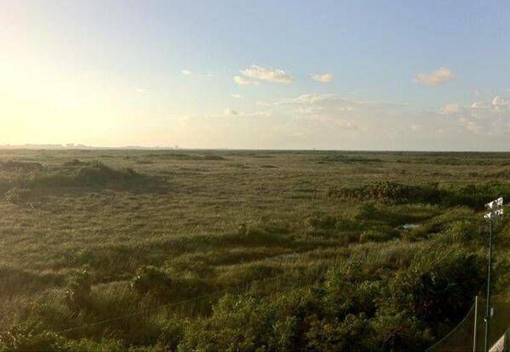 El Ecoparque tendrá una extensión de 107 hectáreas. (Foto/@miparquecun)