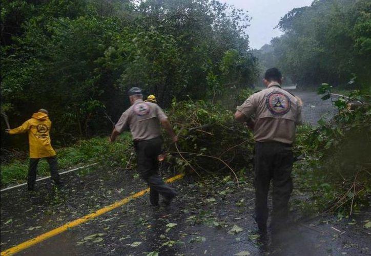 El gobernador de Jalisco, Aristóteles Sandoval, publicó fotos de los trabajos que realizan las autoridades en las zonas afectadas. (twitter.com/AristotelesSD)