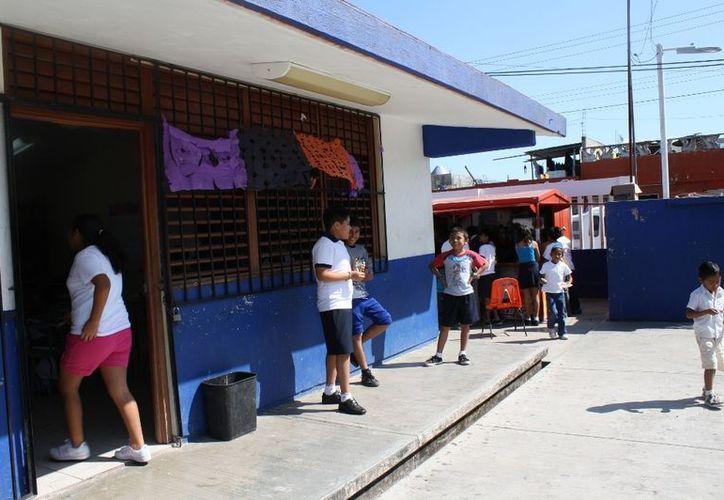 Planteles escolares, como la primaria Mariano Azuela, toman medidas para evitar la reproducción del mosco transmisor de dengue. Mantienen petición permanente para nebulizaciones y son férreos en limpieza. (Enrique Mena/SIPSE)