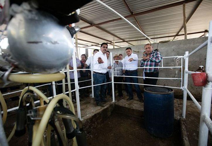 35 productores del sur de Yucatán resultaron beneficiados con los apoyos. (DGCS)