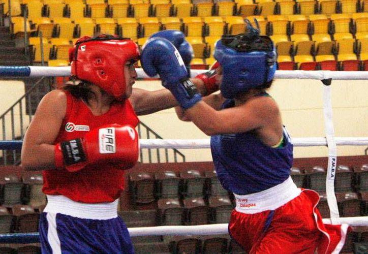 En el torneo de boxeo amateur en el Polifórum Zamná con vistas a la Olimpiada Nacional, el Centro Estatal de Boxeo obtuvo seis medallas de oro. (Milenio Novedades)