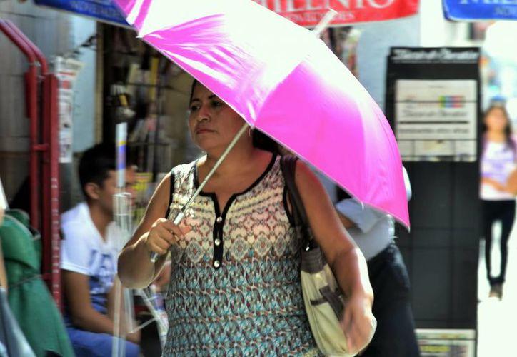 En Mérida, la temperatura máxima este domingo fue de 33.2 grados. (Daniel Sandoval/Milenio Novedades)