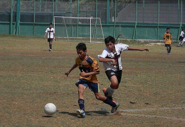 Los equipos expondrán su posición en la fecha 8 del Torneo de Liga. (Ángel Mazariego/SIPSE)