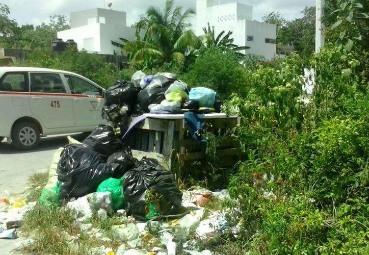 La basura se acumula en las calles de la colonia Veleta. (Rossy López/SIPSE)